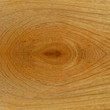 Teak wood surface close up