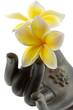 fleurs frangipanier, main bronze