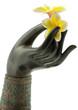 fleur frangipanier, main bronze