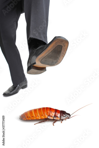 A giant foot about to step on a cockroach