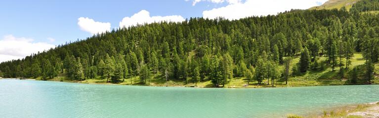 lac de l'Orceyrette, Alpes 1