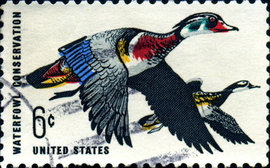 Waterfowl conservation. 1968. US Postage.