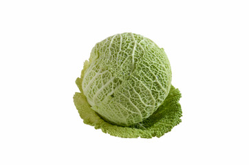 fresh savoy cabbage head isolated on a white  background