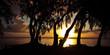 Crépuscule sous les filaos - Ile de La Réunion