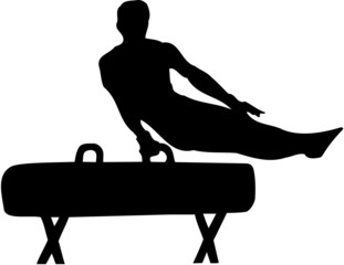 gymnast on a pommel horse