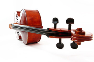 violoncelle - cello - couché