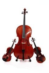 instruments à corde