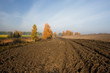 A plowed field in the autumn