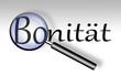 Bonität - Lupe