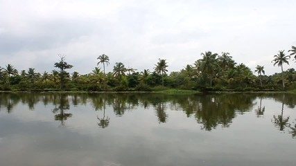 Backwaters in Kerala, India