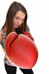 une belle boxeur