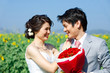 couples on sunflower field