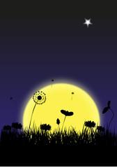Twilight, moon and flowers
