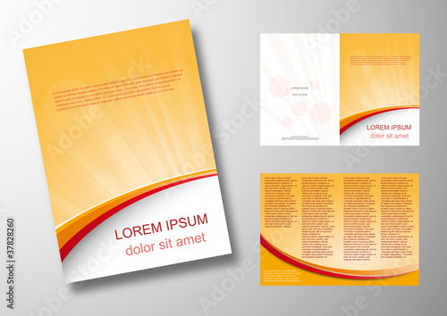 Editable brochure, orange background # Vector