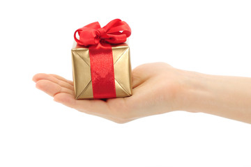 Hand holds present box on a white background