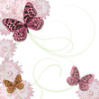 Romantic Butterfly and daisy Background