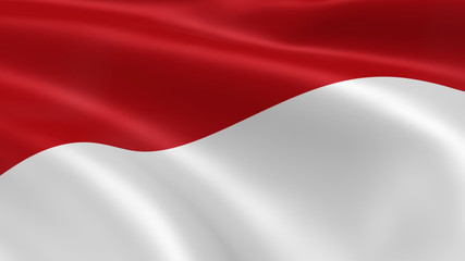 Indonesian flag in the wind. Part of a series.