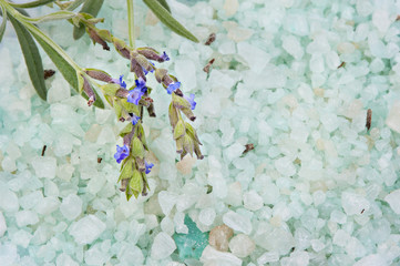 Lavendel, Badesalz und Zweig mit Blüten