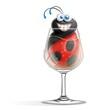 coccinella nel bicchiere pieno