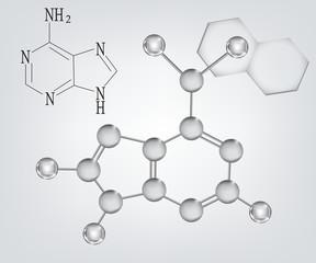 chimica - struttura e formula dell'adenina