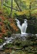waterfall in autumn forrrest
