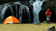 Lone Female Hiker by Tent at Waterfall