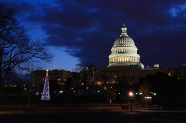 Washington DC - Capitol building and Christmas tree