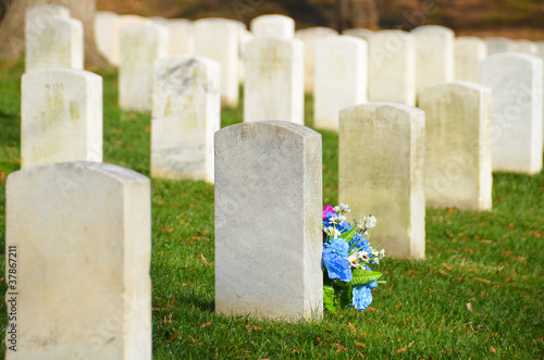 Tombstones in Arlington National Cemetery, Washington DC