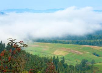 Cloudy Carpathian mountain