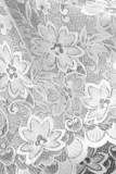 Detail - Weisse Spitze