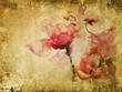 rosen aquarell pergament retro