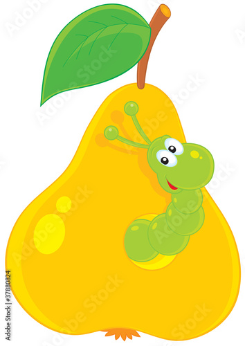green worm looking out of a hole in a yellow pear