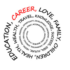 career and other life priorities