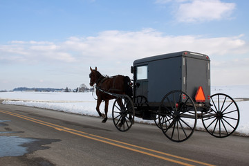 Amish Carriage in Lancaster County