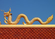 Golden dragon image