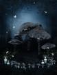 Zaczarowany krąg grzybów
