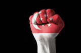 Fist painted in colors of singapore flag