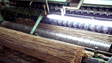 cane processing machine
