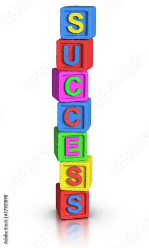 Play Blocks : SUCCESS