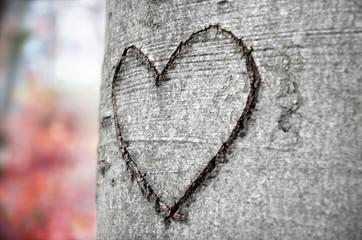 Liebeszeichen im Herbst