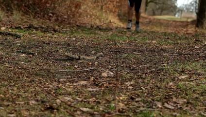 Jogger auf einem Waldweg