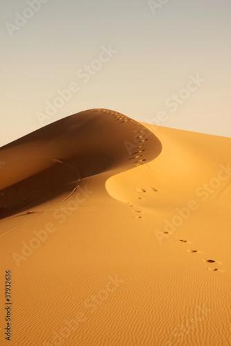 Fototapeten,wildnis,sanddünen,sand,o