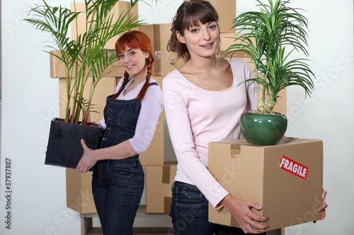 female flatmates carrying cardboard boxes and plants