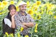 couple in a sunflower field