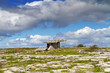5 000 years old Polnabrone Dolmen in Burren, Ireland