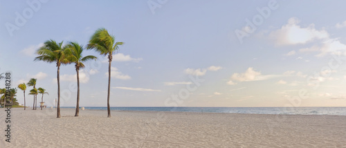 Panorama of Sunrise in Miami Beach Florida with palm trees