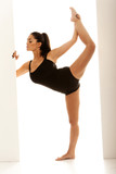 Supple Dancer In Ballet Pose