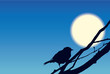 Vector background. Sparrow on the branches