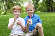 Portrait of two boys in the summer outdoors