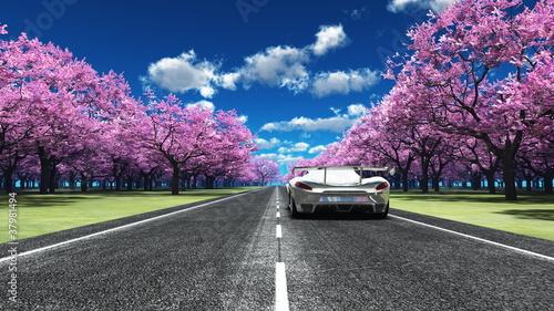 samochod-sportowy-na-pieknej-drodze